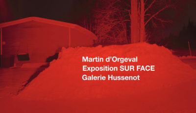 Exposition SUR FACE  /  Martin d'Orgeval 3D Model