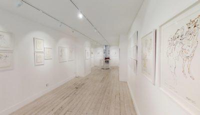 Galerie Guernieri – Exposition Mehmet Güleryüz – Mars 2019