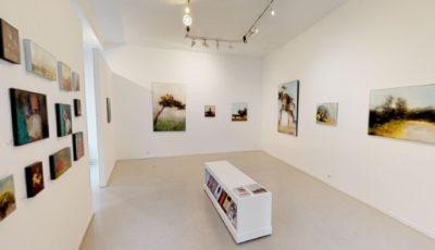 Galerie Felli – Exposition Sandrine Paumelle – Mai 2019 3D Model