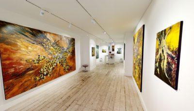 Galerie Guernieri – Exposition Pierre-Luc Bartoli – Juin 2020